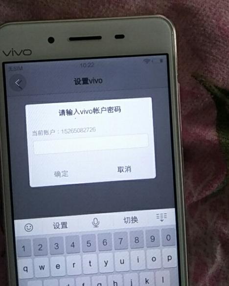 请输入VIVO账户密码